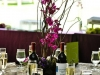 wine-to-table-setting